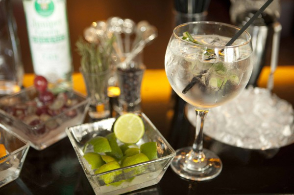 what to drink - gintonic